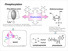 リン酸化反応を利用した機能性材料の合成