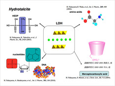 層状リン酸塩を利用した機能性材料の合成