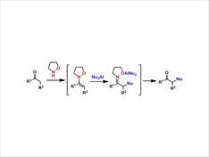 N-アルコキシエナミンを求電子剤とした有機アルミニウム試薬によるケトンのα位極性転換反応を開発しました。本反応では中間体であるエナミンやイミンを単離する必要がなく、通常は導入困難な求核種をケトンのα位に導入することができます。