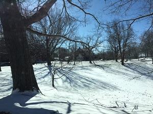 昭和ボストンの雪景色.jpg