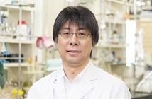 がんのストレス応答系に関するケミカルバイオロジー研究