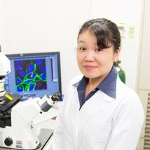 細胞内で作動する糖鎖合成異常を修復する仕組みの発見