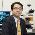 細胞内遊離亜鉛イオンの検出を目的とした<br />蛍光プローブの開発