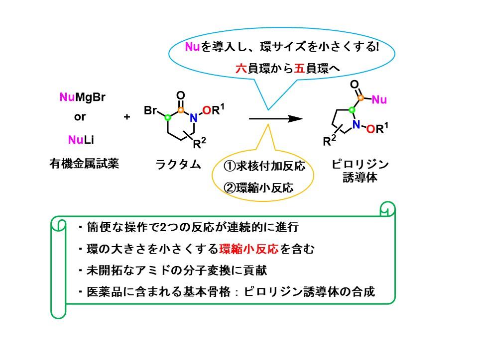 【プレスリリース】環状構造を組み換える新たな分子変換技術の開発(薬品化学研究室)