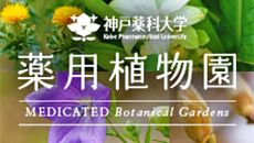 kpu_botanical-thumb-230x130-3179.jpg